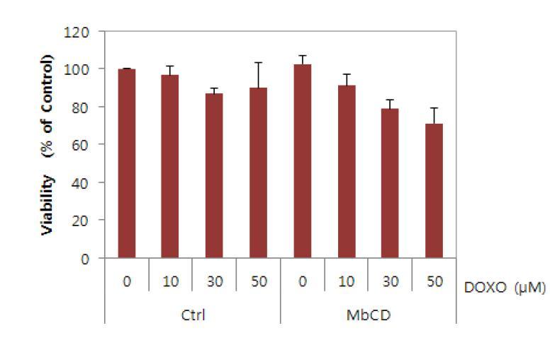 MbCD에 의한 Doxorubicin에 대한 민감성의 증가