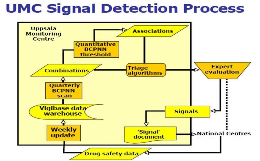 세계보건기구 웁살라모니터링센터(Uppsala monitoring centre)의 실마리정보 검색과정.