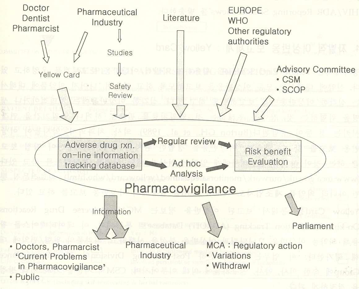 영국의 약물감시 체계.