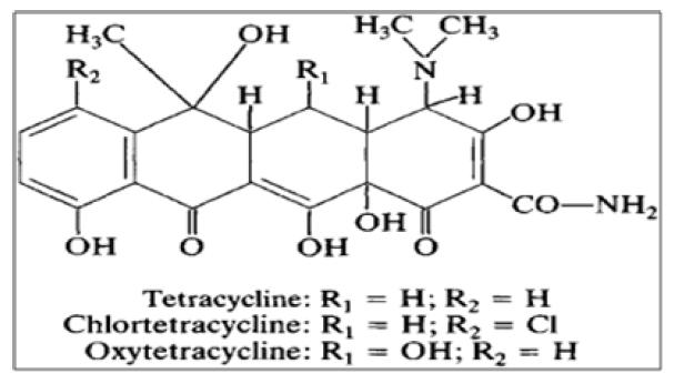 Tetracycline 구조식