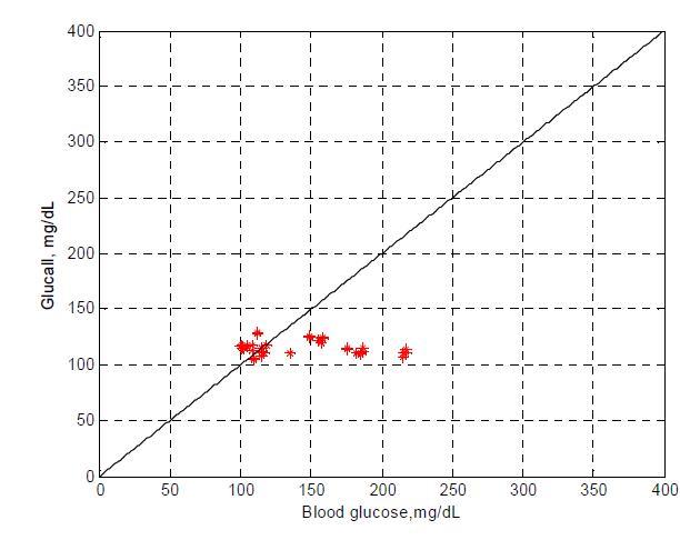 실제 혈당 측정치