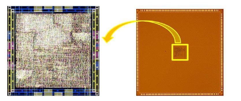 칩의 layout 및 micro photo