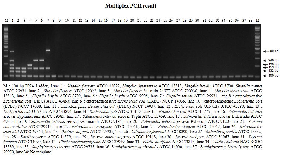 Results of Shigellae multiplex PCR and its specificity with genomic DNAs of various Shigella and otherbacteria.
