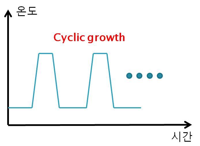 Cyclic growth의 개념도