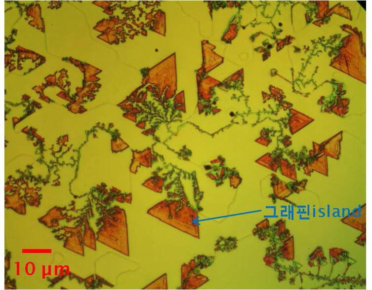 Cyclic growth 방법으로 단결정 구리막 위에 성장된 그래핀 island의 광학현미경 사진