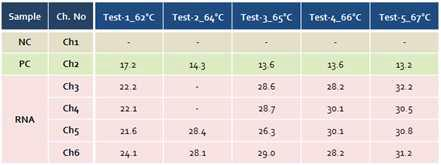 재 디자인된 TaqMan probe 온도별 결과 (62℃ ~ 67℃)