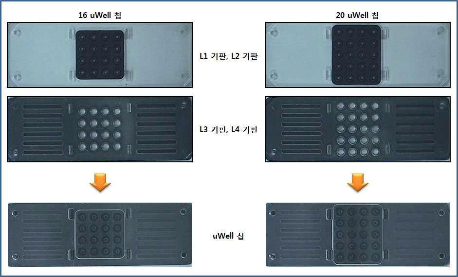 16 uWell 칩과 20 uWell 칩의 1차 제작품