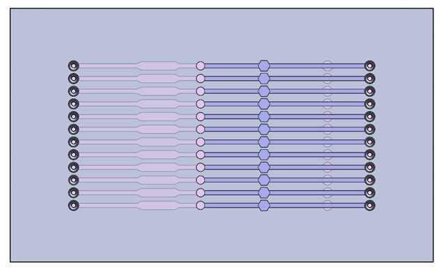 (12채널) 다중 유전자 분리용 샘플 전처리 칩 개념도