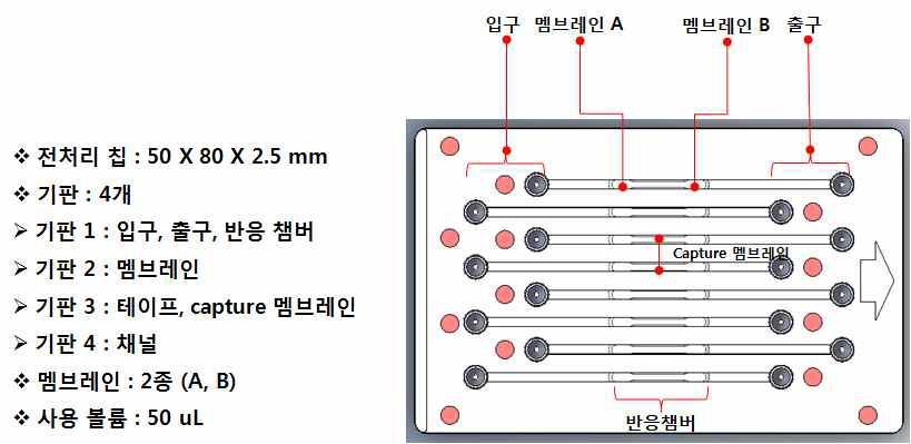 8채널 다중 유전자 분리용 샘플 전처리 칩 설계