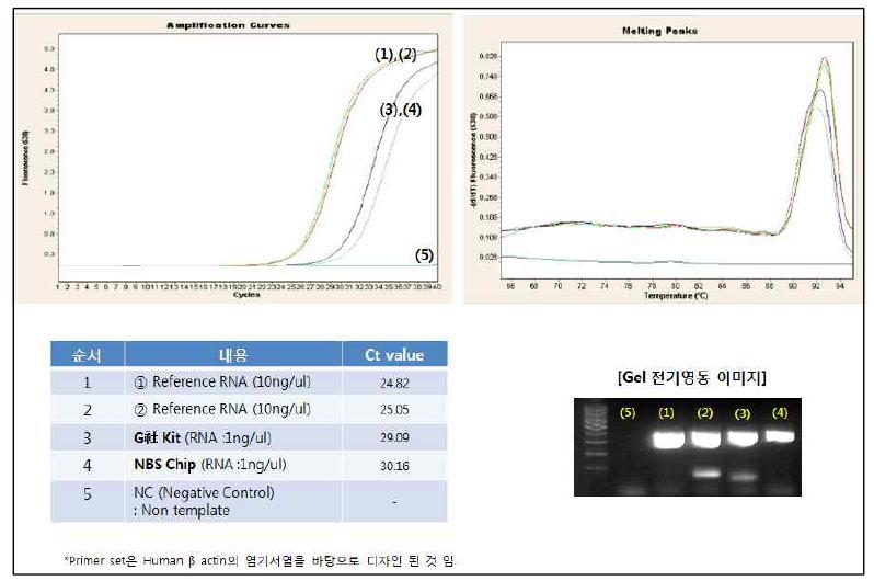 타사 키트와 다중 유전자 분리용 샘플 전처리 칩에서 RNA prep 후 Real-time PCR 및 전기영동 결과