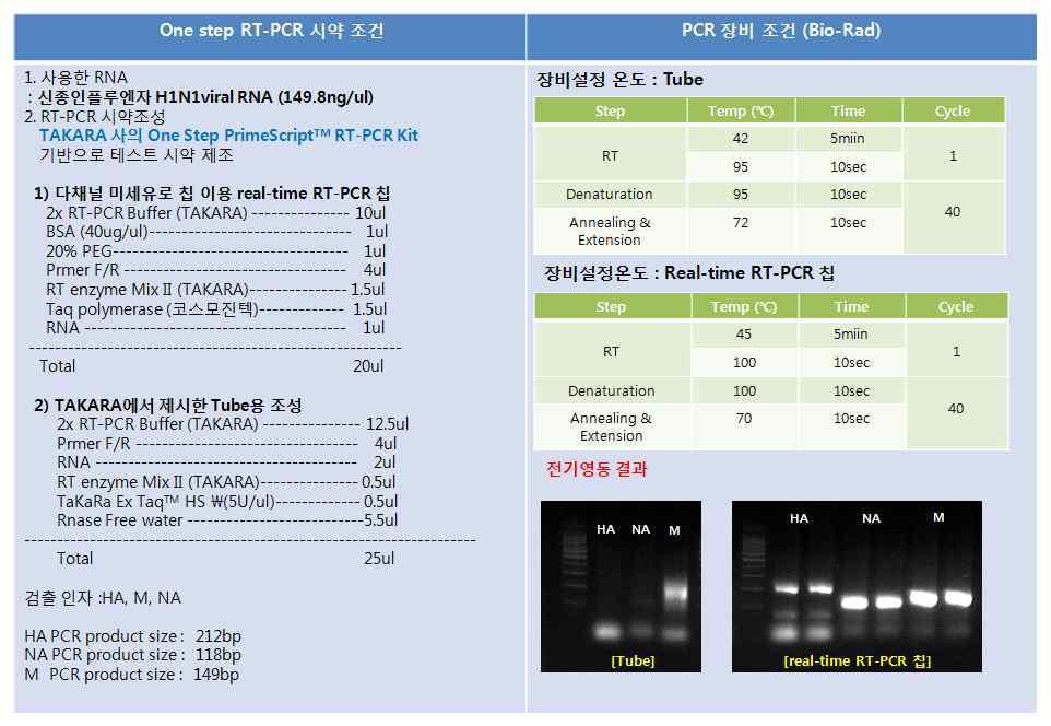 튜브와 real-time RT-PCR 칩에서 One-step RT-PCR 결과