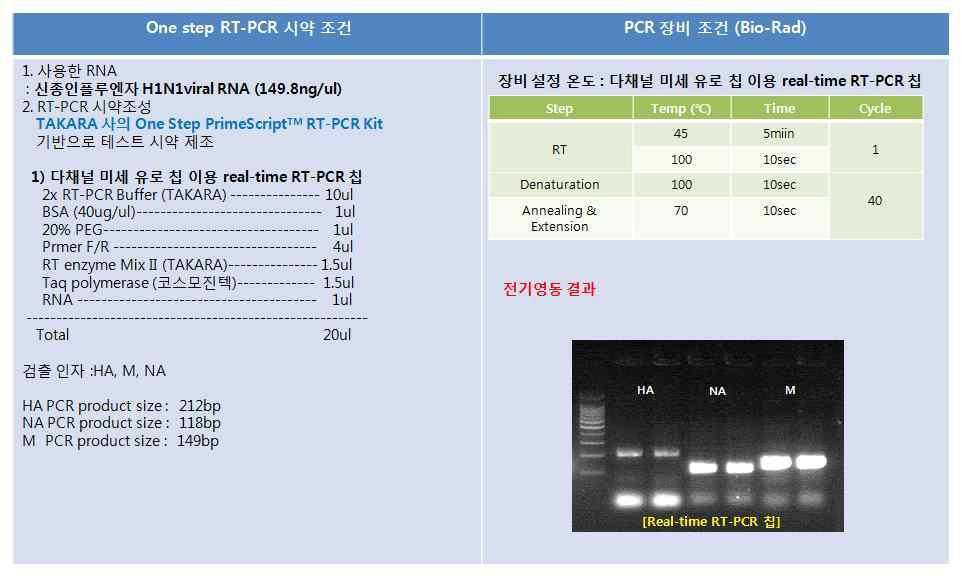 Real-time RT-PCR 칩에서의 One step RT-PCR 재현성 결과