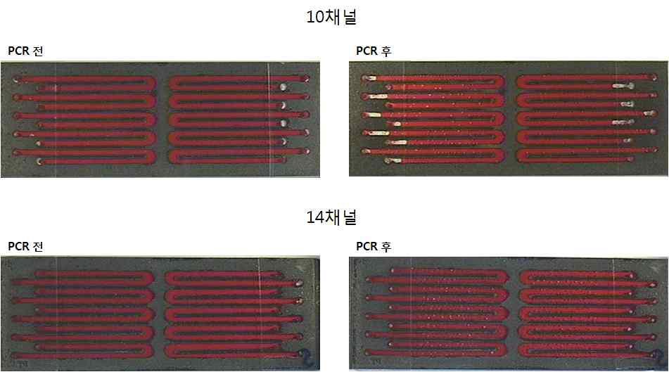 10과 14채널 미세 유로 칩 이용 real-time RT-PCR 칩 누수 및 기포 결과