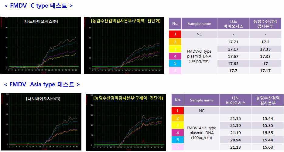 칩과 구제역 혈청 타입 C, Asia 타입 DNA를 사용하여 One-step RT & rt PCR 결과