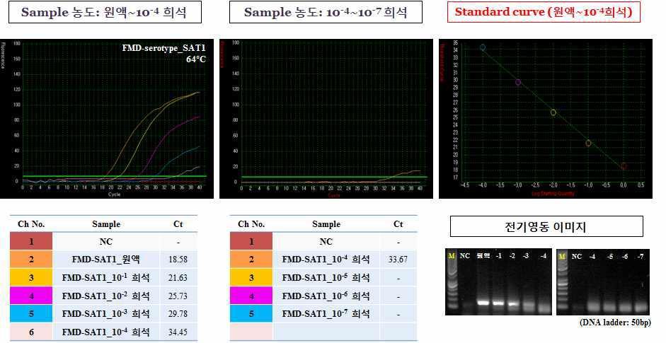 구제역 바이러스 (혈청 타입 SAT 1)의 농도별 테스트 결과