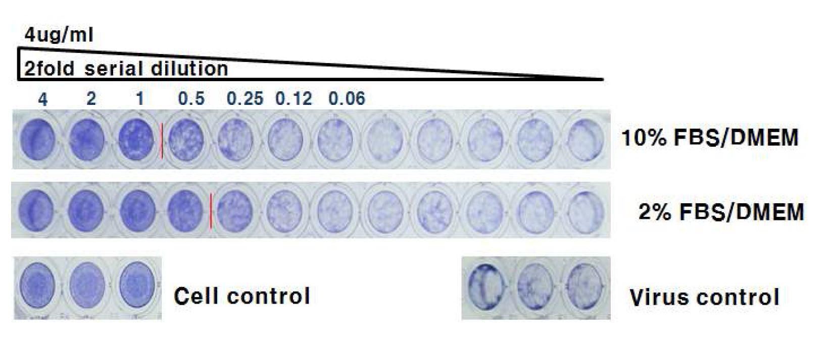 그림 61. FBS 함량에 따른 HzVSF 활성 비교