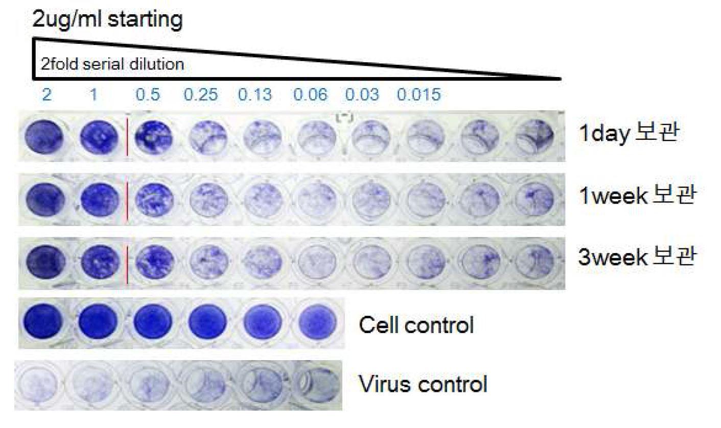 그림 68. 배양액 수거 후 보관기간에 따른 HzVSF의 활성 측정
