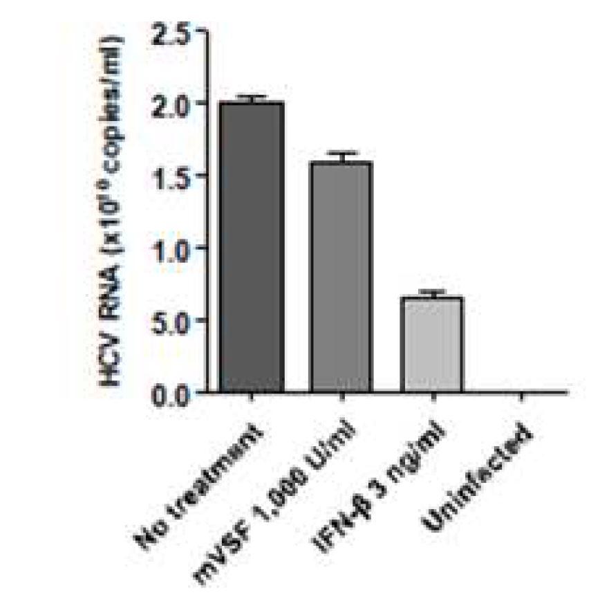 그림 73. Real-time quantitative PCR