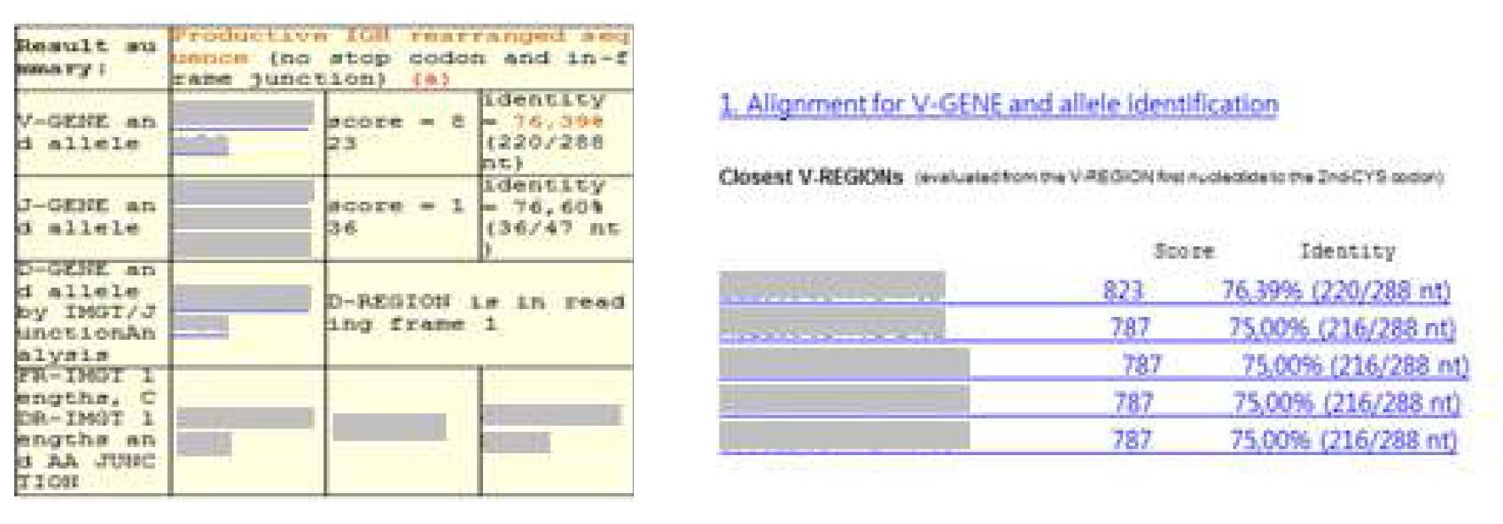 그림 34. Human germline immunoglobulin heavy chain V region 아미노산 서열 list up