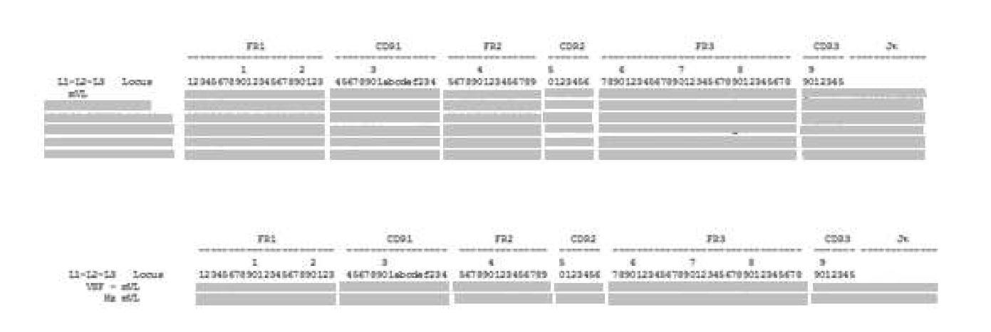 그림 35. mVSF와 Human germline immunoglobulin κ chain V region의 아미노산 서열 분석 및 design