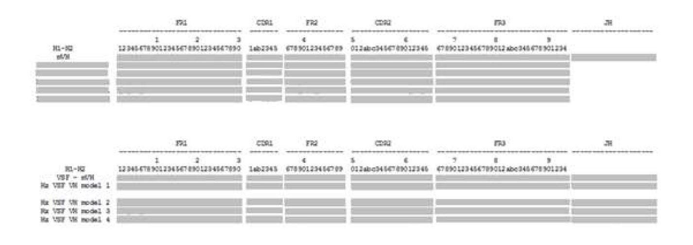 그림 36. mVSF와 Human germline immunoglobulin heavy chain V region의 아미노산 서열 분석 및 design