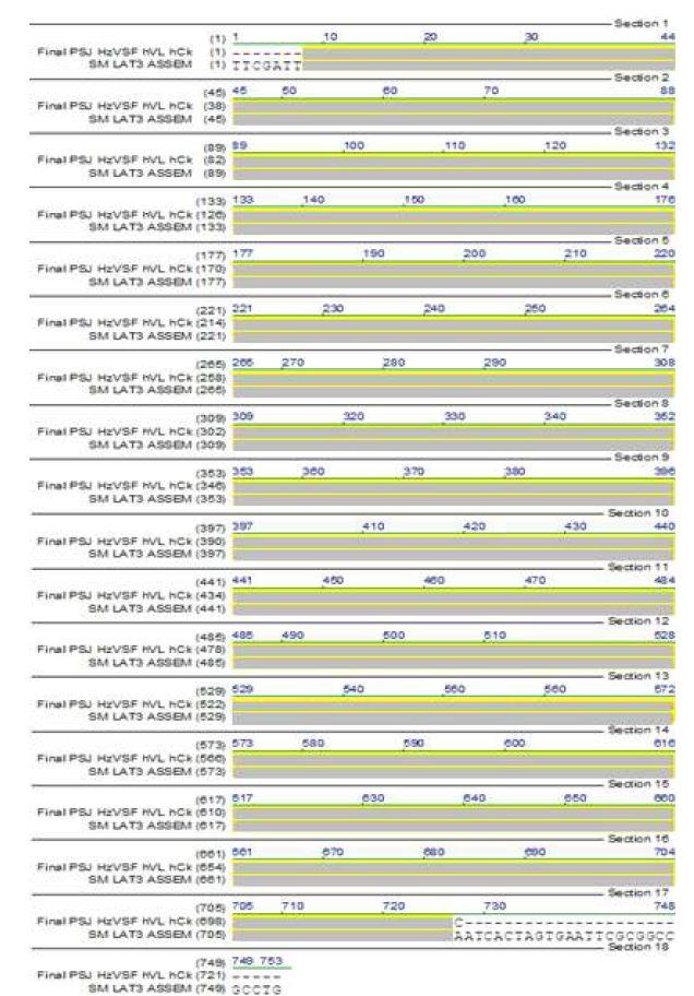 그림 52. hVL.hCκ의 Sequencing 결과 와 design된 HzVSF hVL.hCκ의 alignment 결과