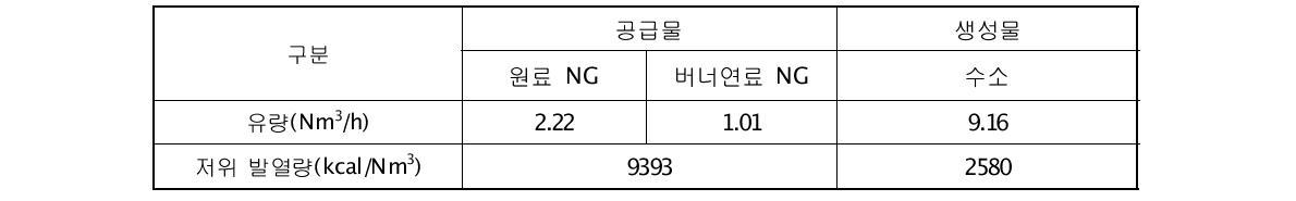 10Nm3/h급 연료개질기 반응물, 공급물의 유량 및 저위발열량