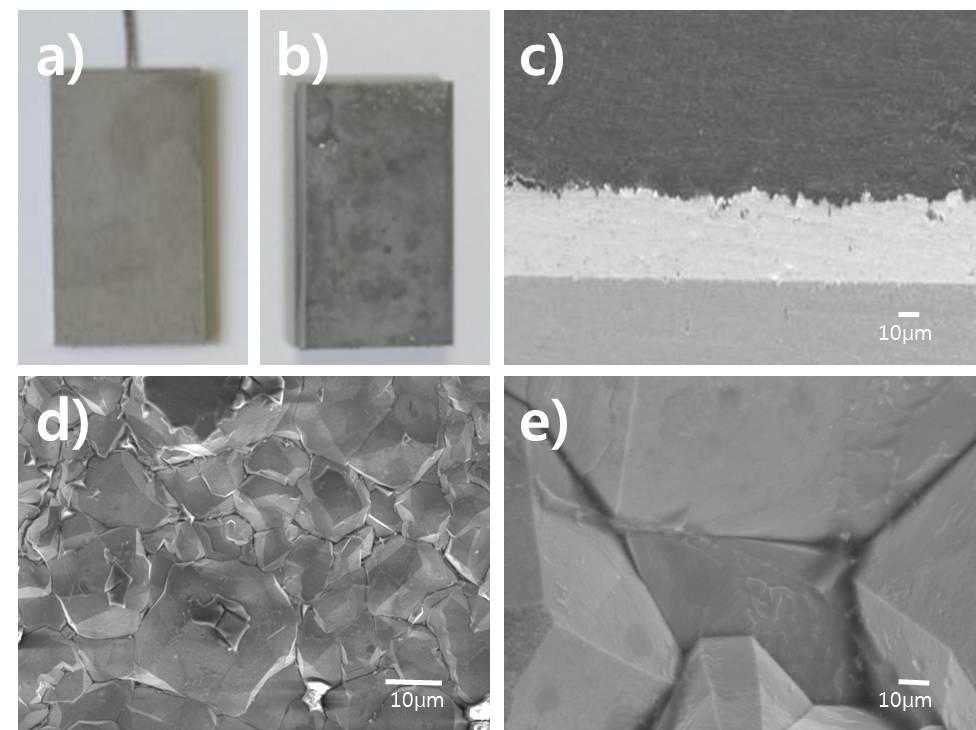 전류밀도 5 mA/cm2 조건으로 형성된 코팅 피막의 부식 특성