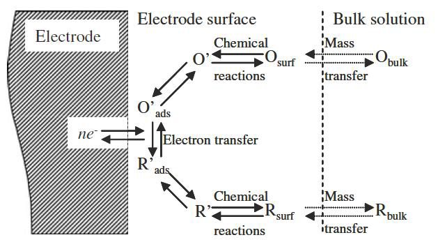 Pathway of a general electrode reaction.