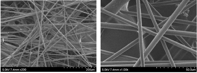 탄소섬유 웹(CP-13)의 표면사진