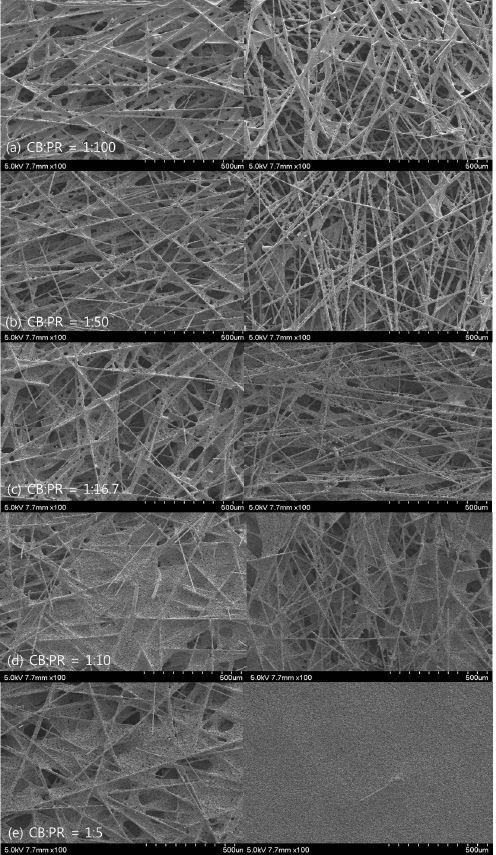 흑연분말-페놀수지 용액에 함침후 탄소종이의 SEM 사진