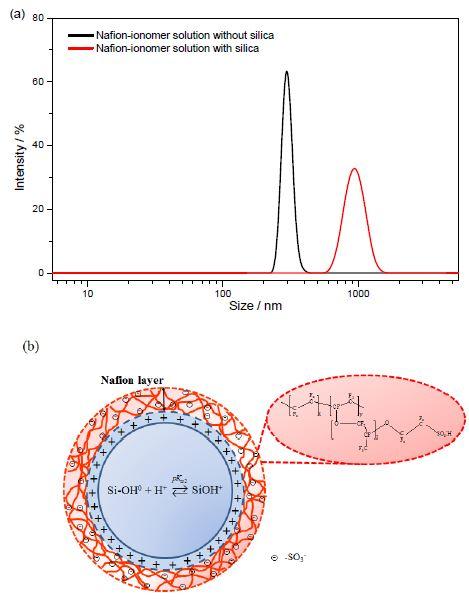 (a) IPA 용매에 용해된 나피온 이오노머의 크기분포 곡선.(b) 음전하를 띠는 나피온 이오노머와 양전하를 띠는 실리카나노입자 사이의 자기조립을 보여주는 모식도