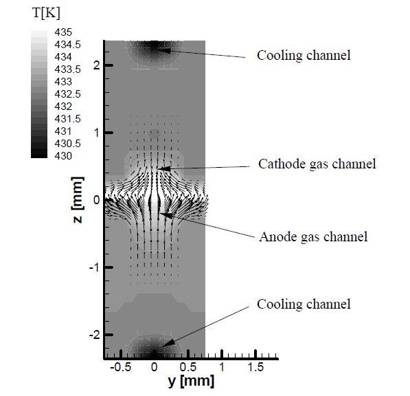 x=50 mm 지점에서의 온도분포 및 속도 벡터