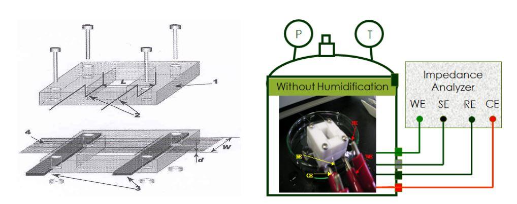 (a) 고분자전해질 막의 수소이온전도도 측정용 셀의 개략도: 1, Teflon block; 2, 전압 측정용 Pt wires; 3, 전류 공급용 Pt foils; 4, 고분자 전해질 막 (4 cm × 1 cm) (b) 측정 셀 실제 사진: WE, 작업 전극; SE, 센서; CE, 상대전극; RE, 기준전극