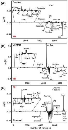 마우스의 각 장기별 조직 시료에 대한 OPLS-DA loading plot