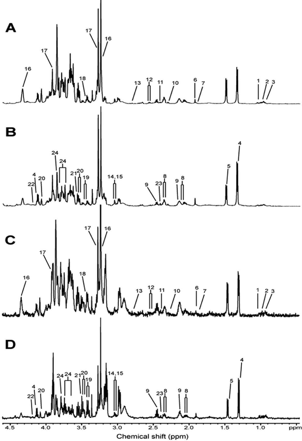 Inner medullary collecting duct (IMCD) 세포 추출 시료에 대한 대표 NMR 스펙트럼