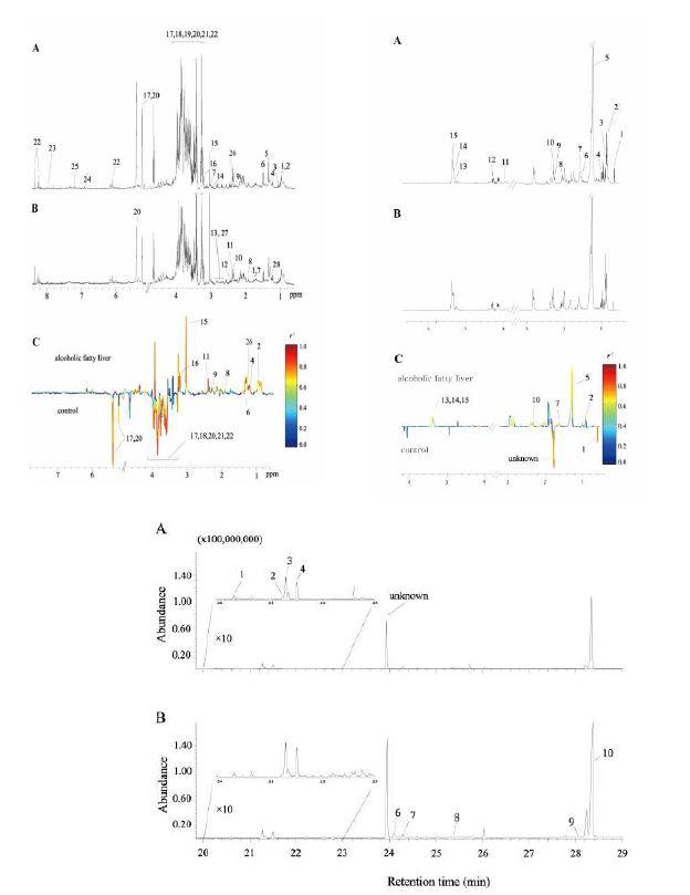 정상과 알코올성 지방간의 간으로부터 얻은 GC 스펙트럼