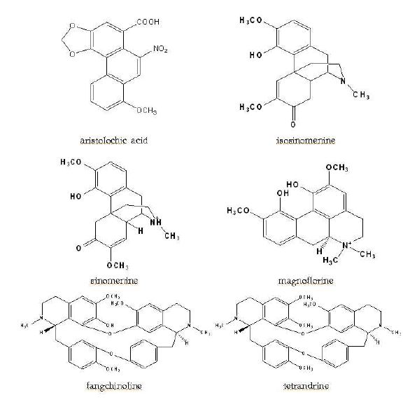 Chemical structures of marker compounds in Fangchi species
