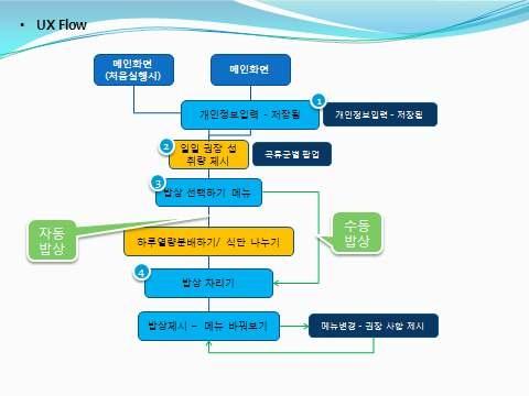 성인용 애플리케이션 개발 흐름도