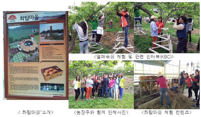 배 신품종 생산농가의 열매솎기 체험