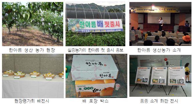 한아름 현장평가회 개최