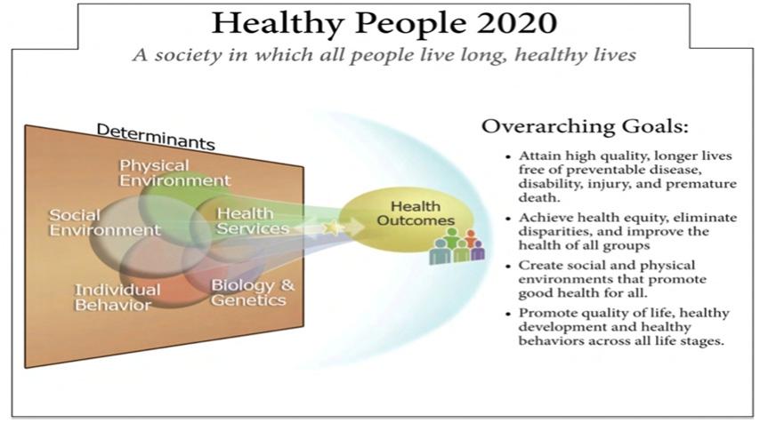 〔그림 3-6〕 미국 Healthy People 2020 frame