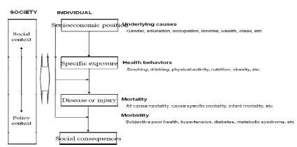 〔그림 4-14〕 Diderichen의 건강불평등 설명모형