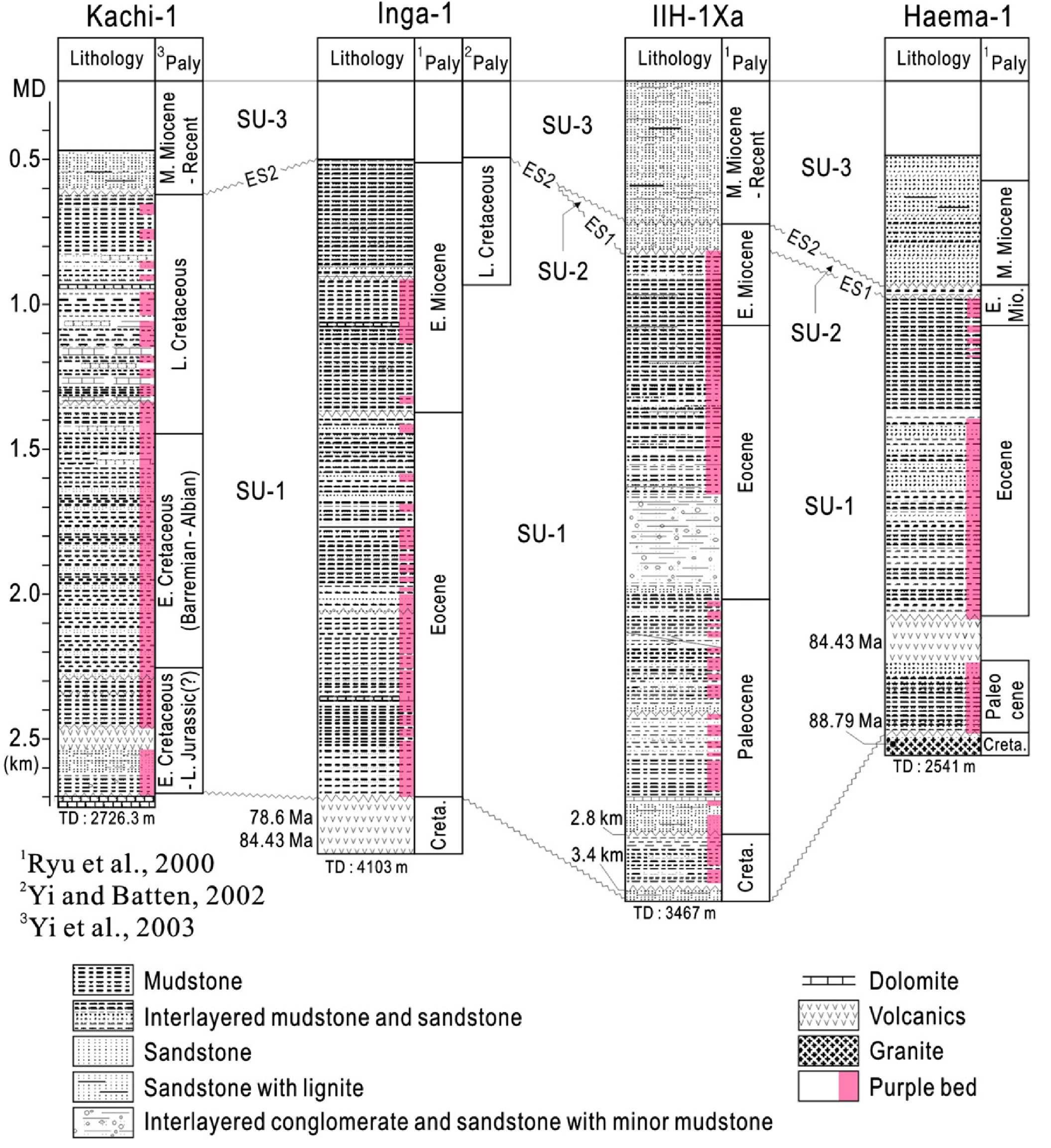 Lithology and biostratigraphy of exploratory wells (Kachi-1, Inga-1, IIH-1Xa, Haema-1)