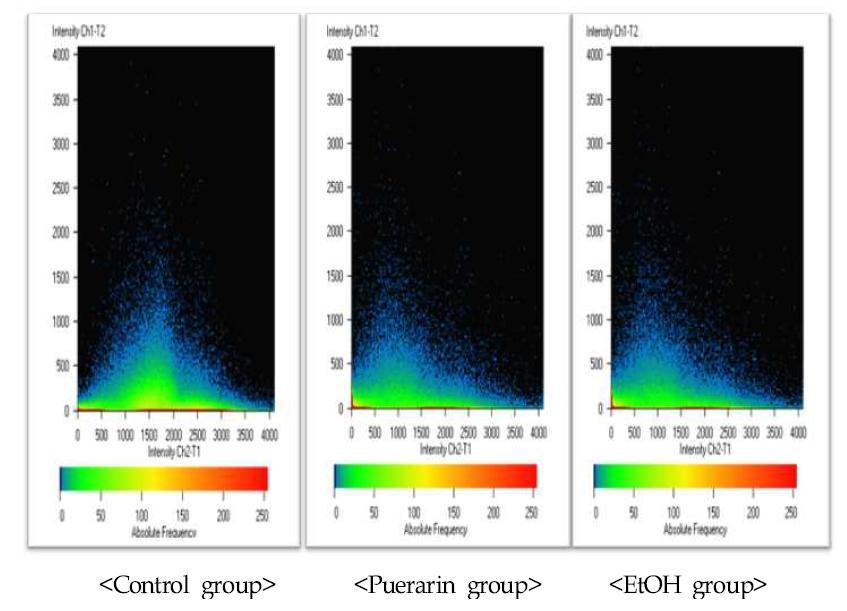 간조직 세포 중 LC3 단백질 발현의 2D분석