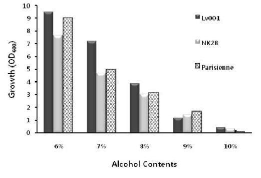 NK28의 알코올 저항성.