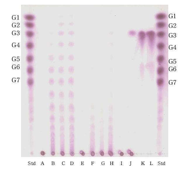 AmyX의 다양한 기질 분해능