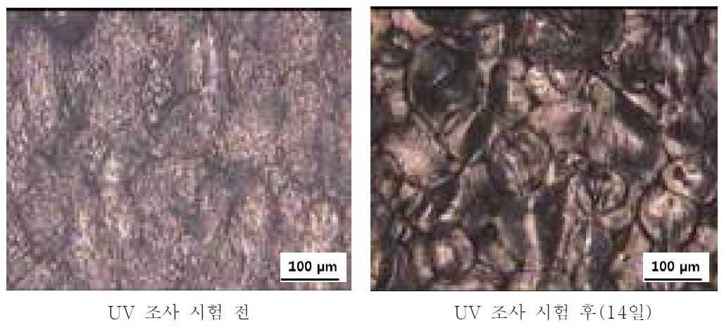 PS + Ce 1 wt% + PLLA/PBAT 20 wt% UV 조사시험 전-후 광학현미경 사진