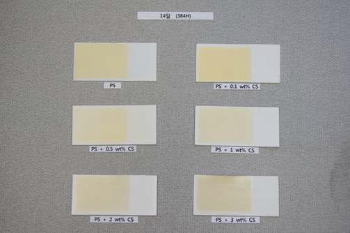 UV 조사 분해 시험 (14일)