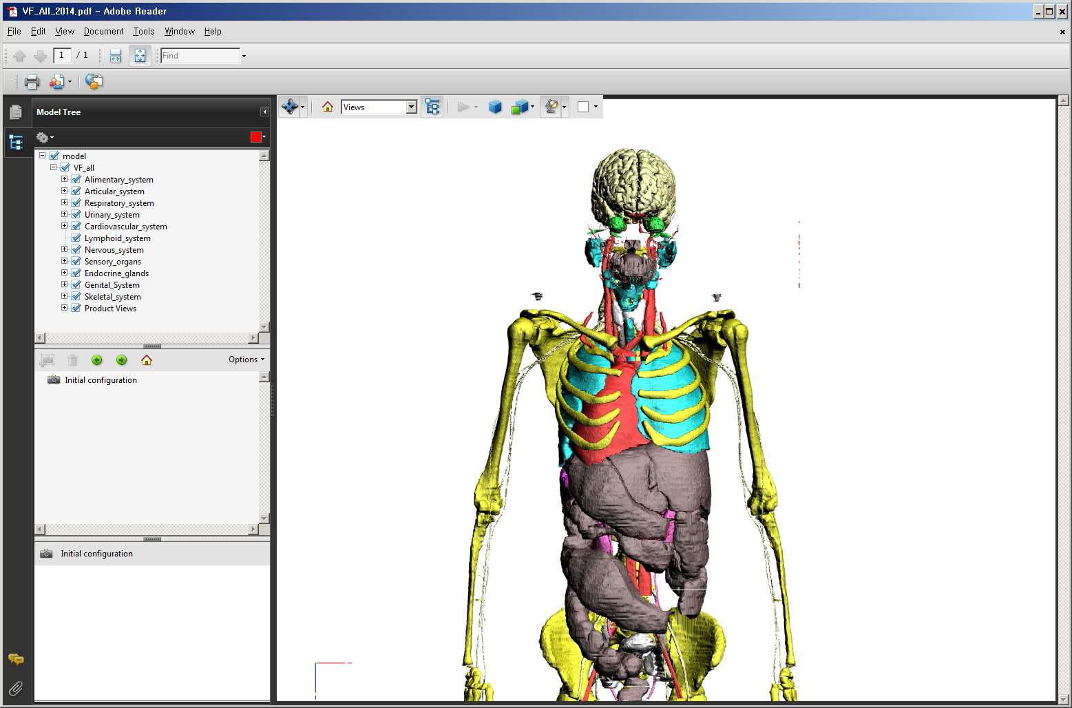 PDF file produced with Surface 3D models of female structures